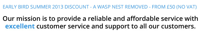 wasp network offer 02 Wasp Removal Bristol